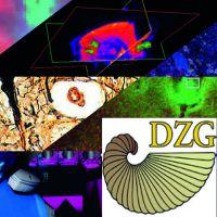 dzg_grafik