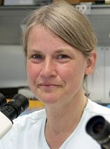 Anja Horn-Bochtler